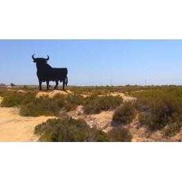 El toro de Osborne de Santa Pola