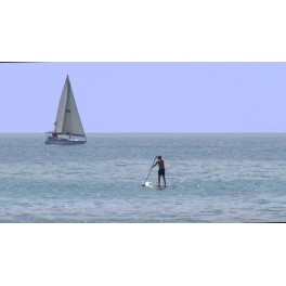 Barco y Paddle Surf