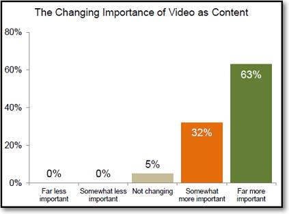 importancia de vídeo