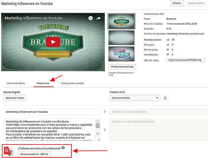 traduccion profesional en youtube