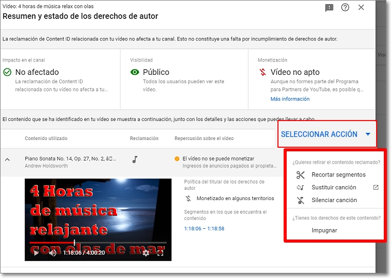 Resumen y estado de derechos de autor en youtube