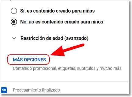 Opciones de detalles del vídeo en youtube