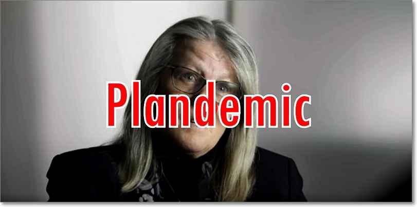 Plandemic Fake news en Youtube